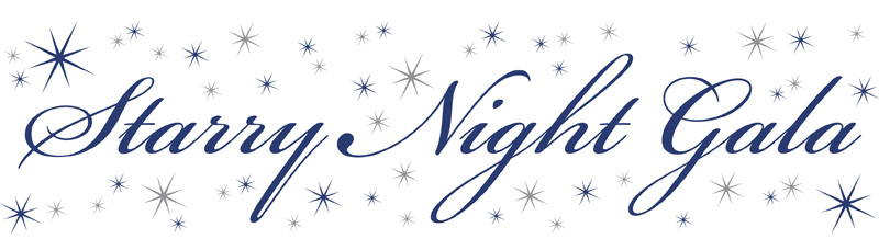Gala FY11 Starry Night Banner